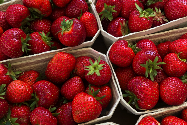 Danish strawberries by the 0.5kg, at a street market